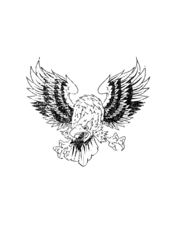 Drawing eagles ink. Eagle enke s freedom