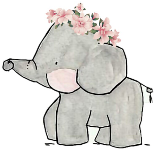 Drawing elephants cute. Elephant family flowers floral