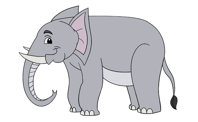 Drawing elephants elephant tail. How to draw an