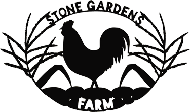 Stone gardens farm . Pork drawing chicken meat clip library stock