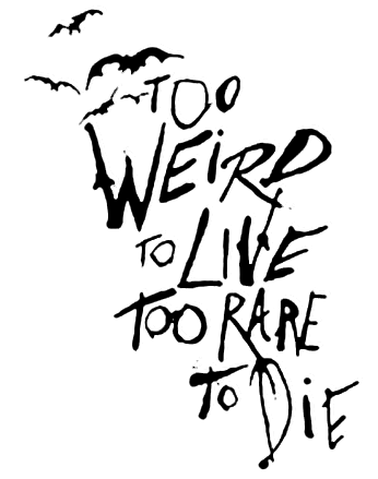 Drawing quote song. Fear and loathing drawn