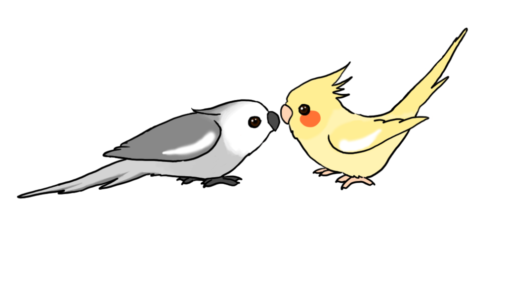 Budgie drawing painting. Cute cartoon cockatiels by