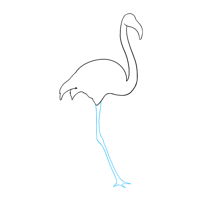 Drawing Flamingos Bird Transparent Png Clipart Free Download Ya