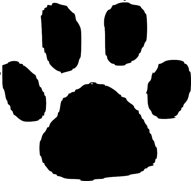Drawing footprint illustration. Clipart reptile free on