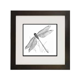 Drawing insect ink. Projects archive creating a