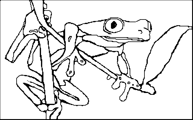 Frogs drawing line. Frog animals printable coloring