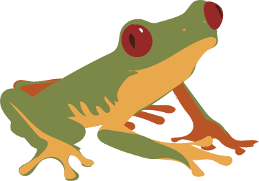 Drawing frogs leaf. It s tree frog