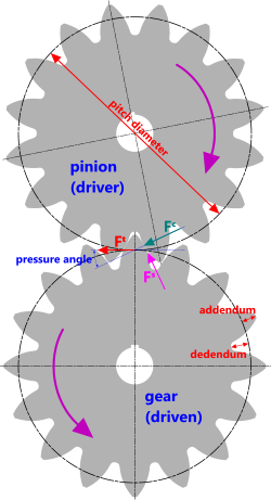 Drawing gear pinion. Spur calculator tooth profile