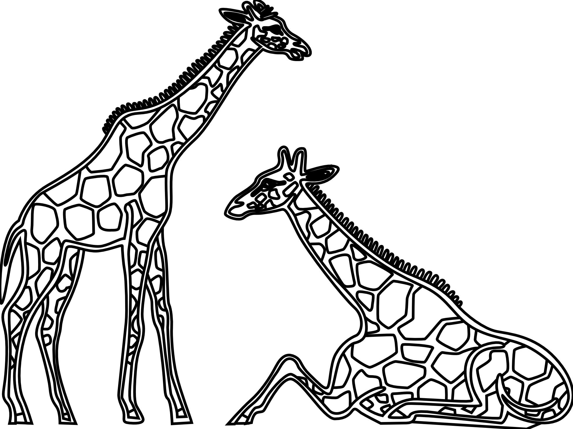 Drawing giraffe. Line google search clean