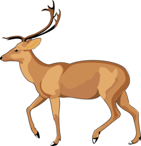 Drawing goats side view. Walking animal clip art