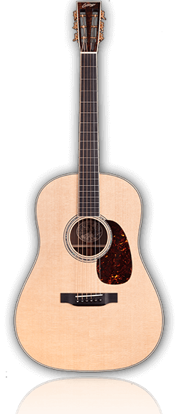 Drawing guitar 12 string. Collings ds series fret