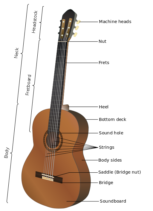 Drawing guitar beginner. What to pick classical
