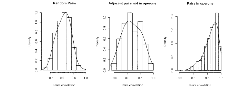 Drawing histograms random. Histogram of the correlation