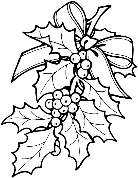 Drawing holly. Printable christmas ornament patterns
