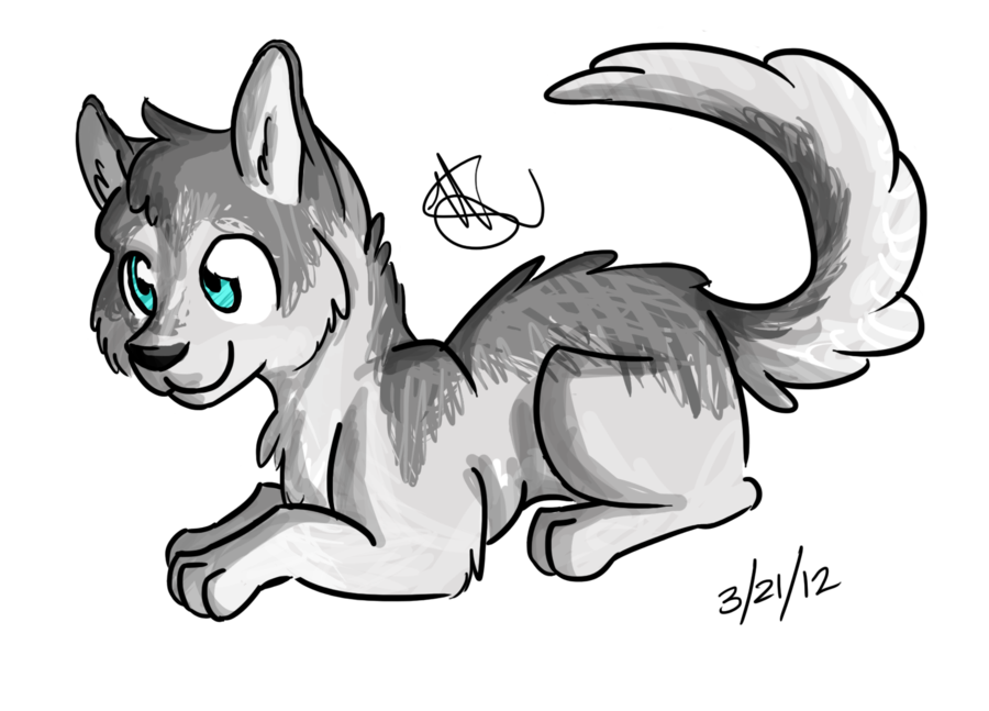 Drawing husky. Imgs for drawings of