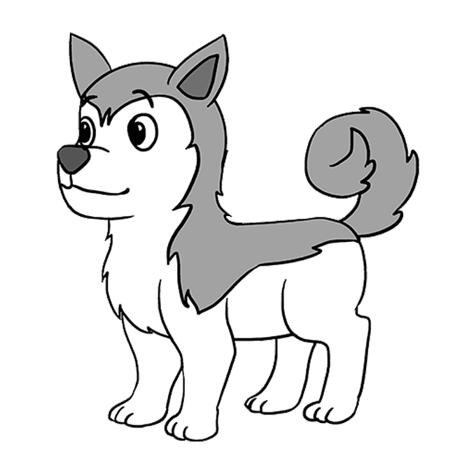 Sledding drawing husky dog. How to draw a