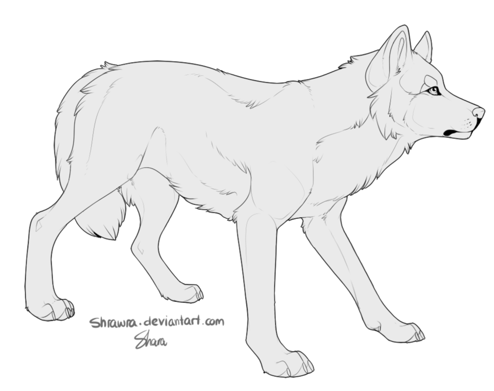 Drawing husky bad. Free canine lineart by