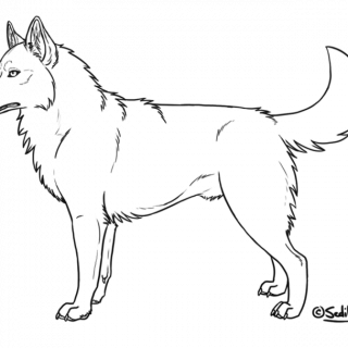 Drawing Husky Detailed Transparent & PNG Clipart Free ...