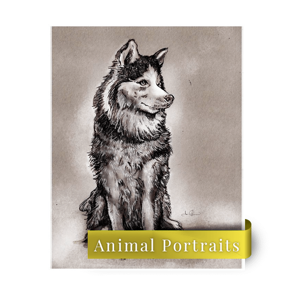Drawing husky ink. Custom personalized animal and