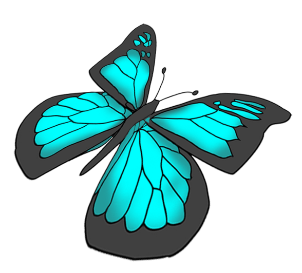 Drawing insect beautiful. Butterflies flying at getdrawings