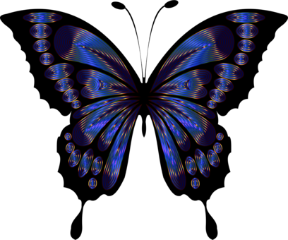Drawing insect beautiful. Butterfly purple violet free