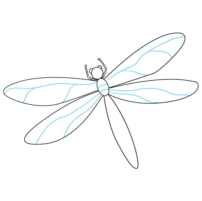 Eve drawing wing. How to draw a