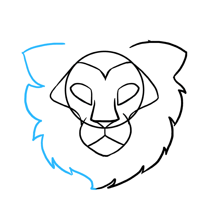 Drawing lions directed. How to draw a