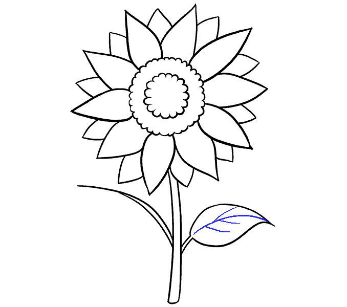 Drawing journals flower. How to draw a