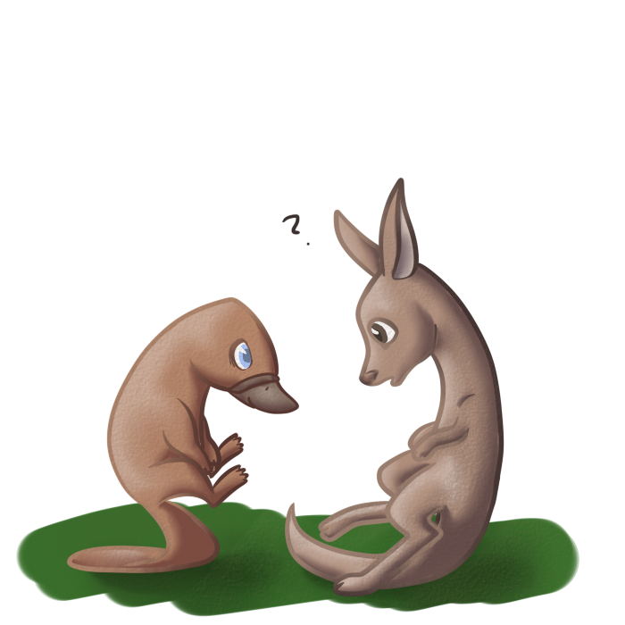 Drawing kangaroo draw something. Platypus and by otterlore