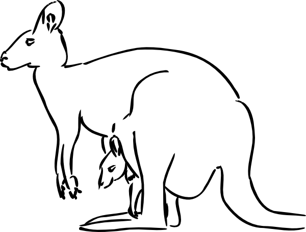 Drawing kangaroo wild animal. Free clip art vector