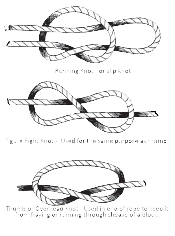 Drawing knots bow. Point m csf design