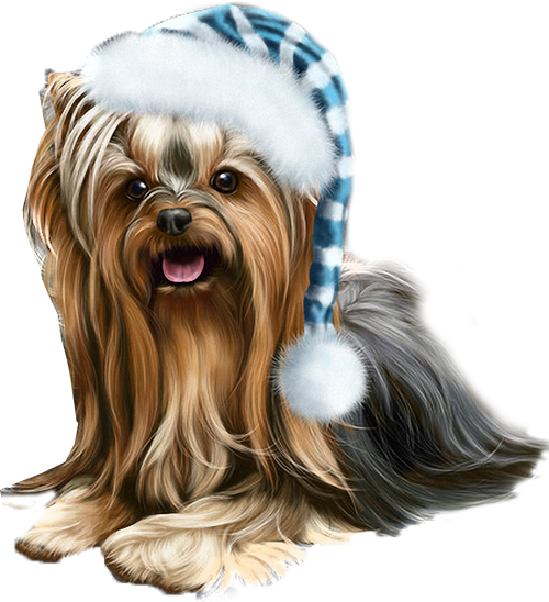 Yorkie svg animated.  chiennoel dog d clip art black and white library