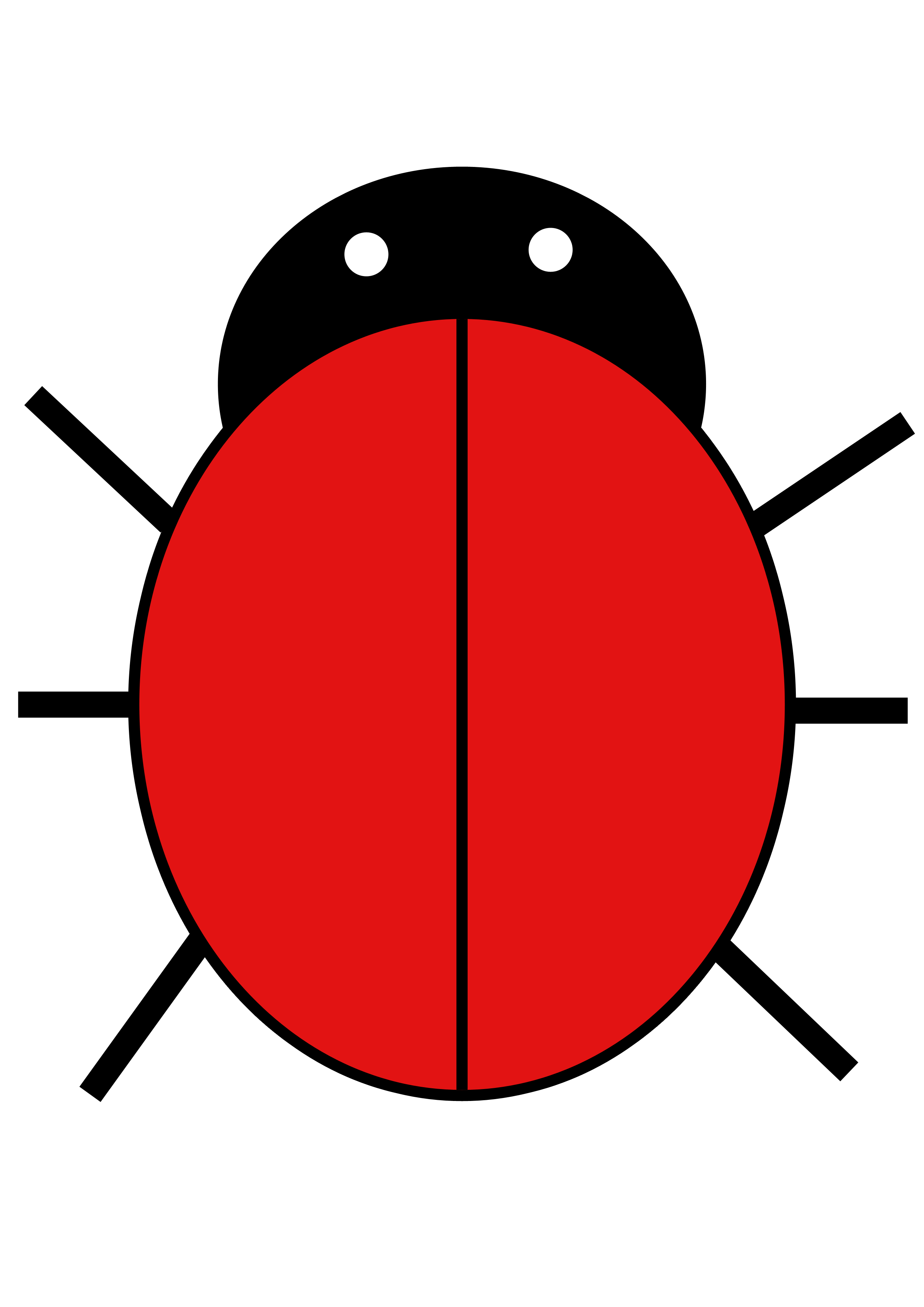 Eye clip printable. Ladybird free images at