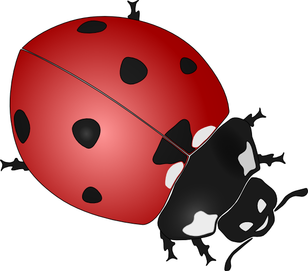 Drawing ladybug cute. Drawings clipart panda free