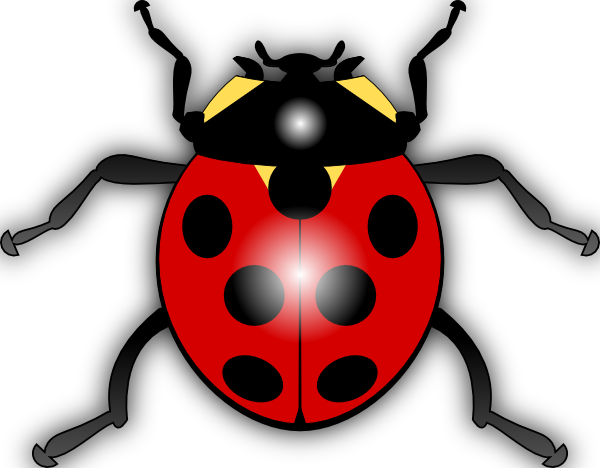 Vector bug drawn. Jilagan ladybug clip art