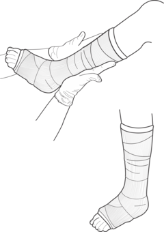 Crow foot computer icons. Drawing leg clip art black and white