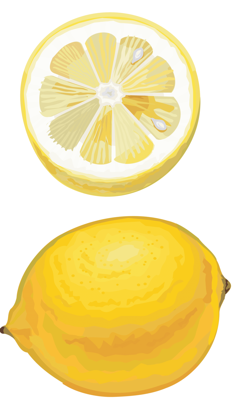 Drawing lemon meyer. Download free png cut