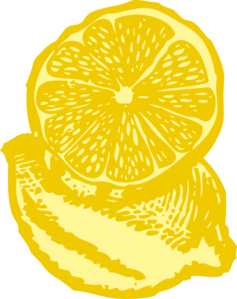 Drawing lemons free vector. Lemon slice clip art