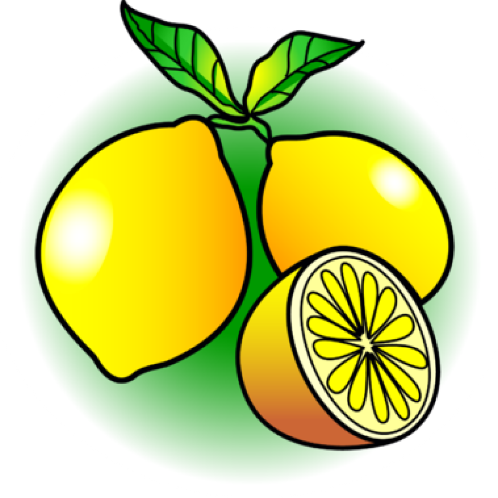 Drawing lemon clipart. At getdrawings com free