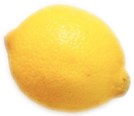 Drawing lemons meyer lemon. Popular and trending stickers