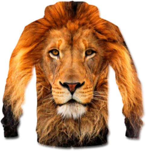 Drawing lions angry lion. Clipart abstract for free