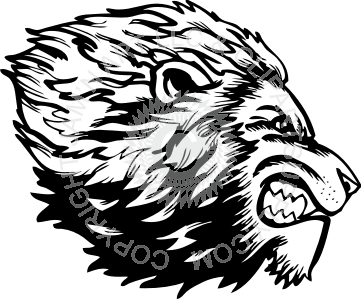 Drawing lions angry lion. At getdrawings com free