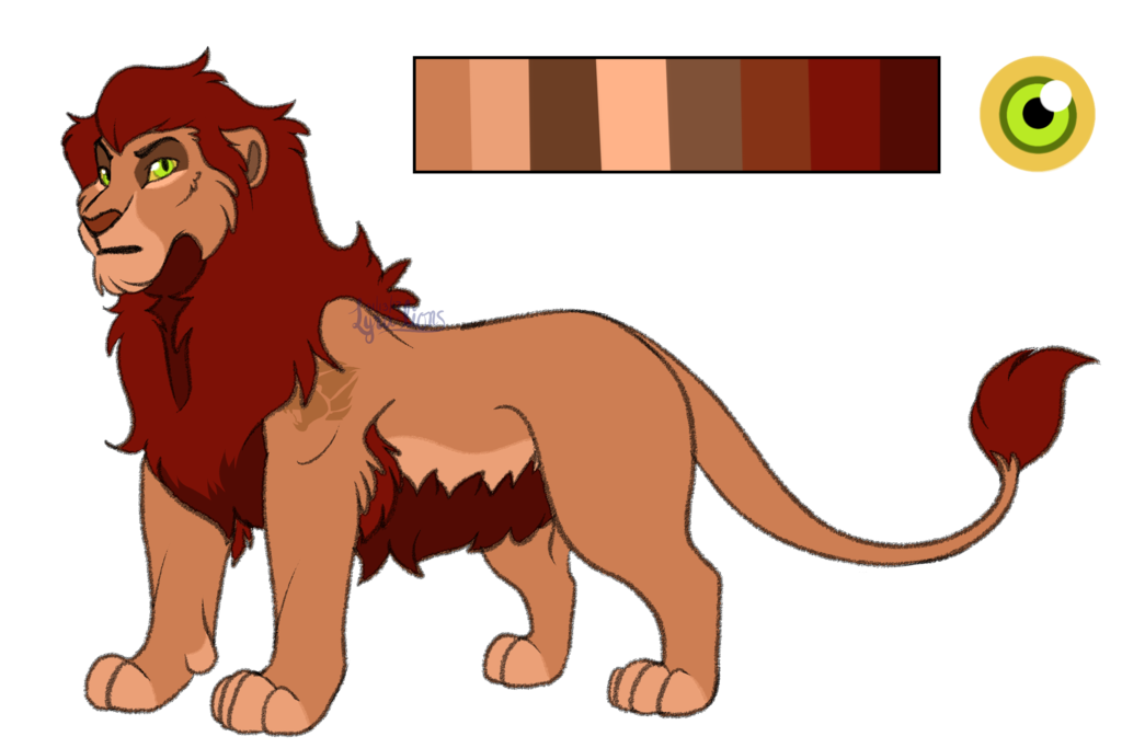 Drawing lions barbary lion. Domevlo reference sheet by