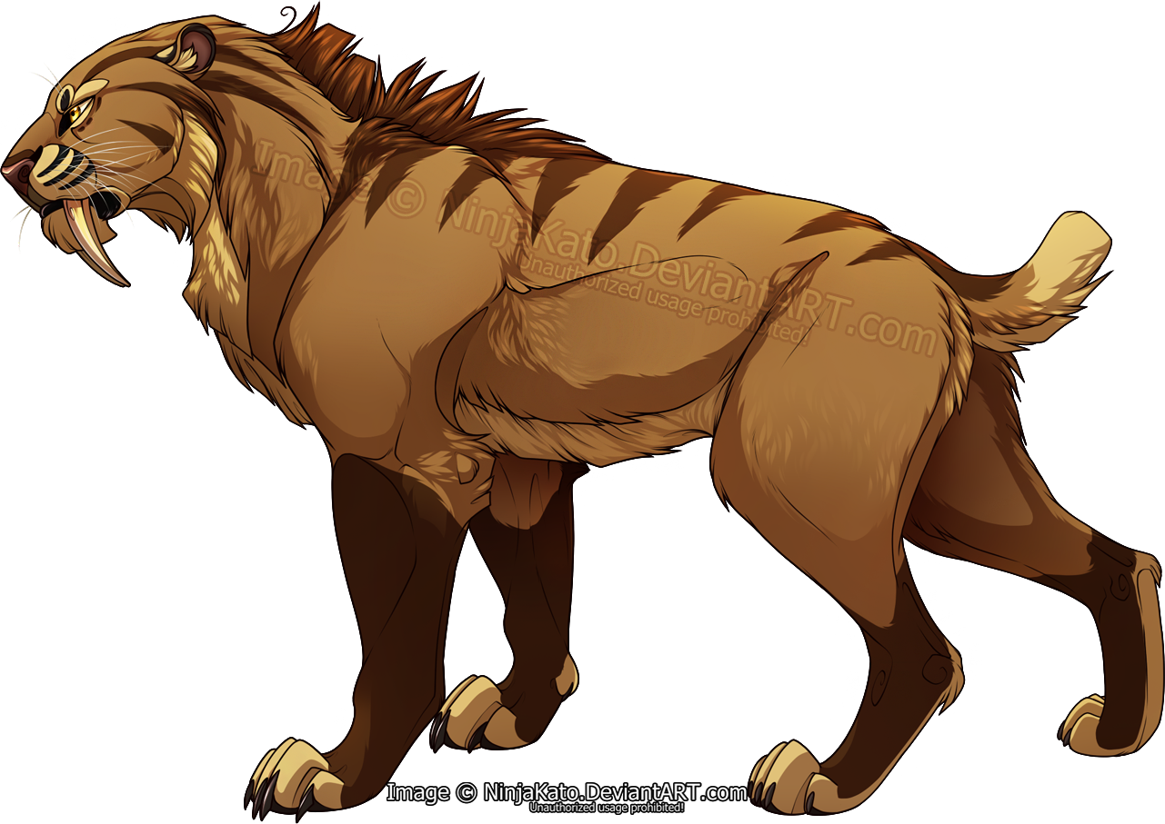 Drawing lions big cat. Sabertooth anime wolves pinterest