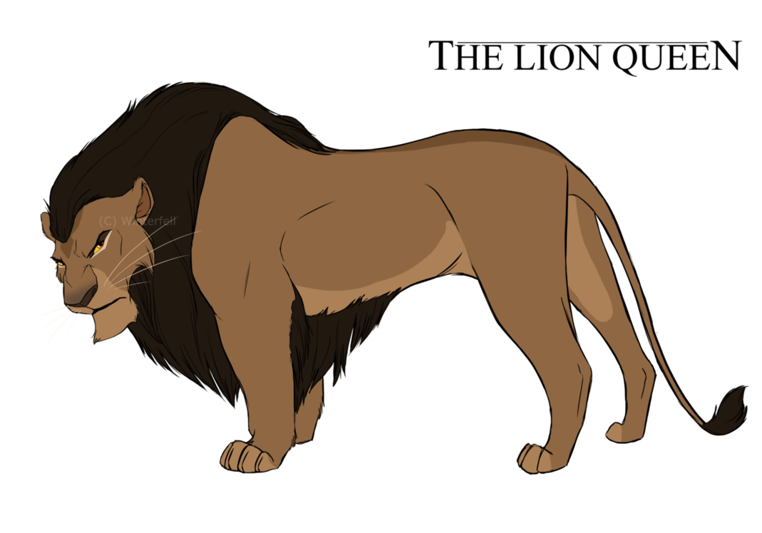 Drawing lions beginner. Tlq concept ade by
