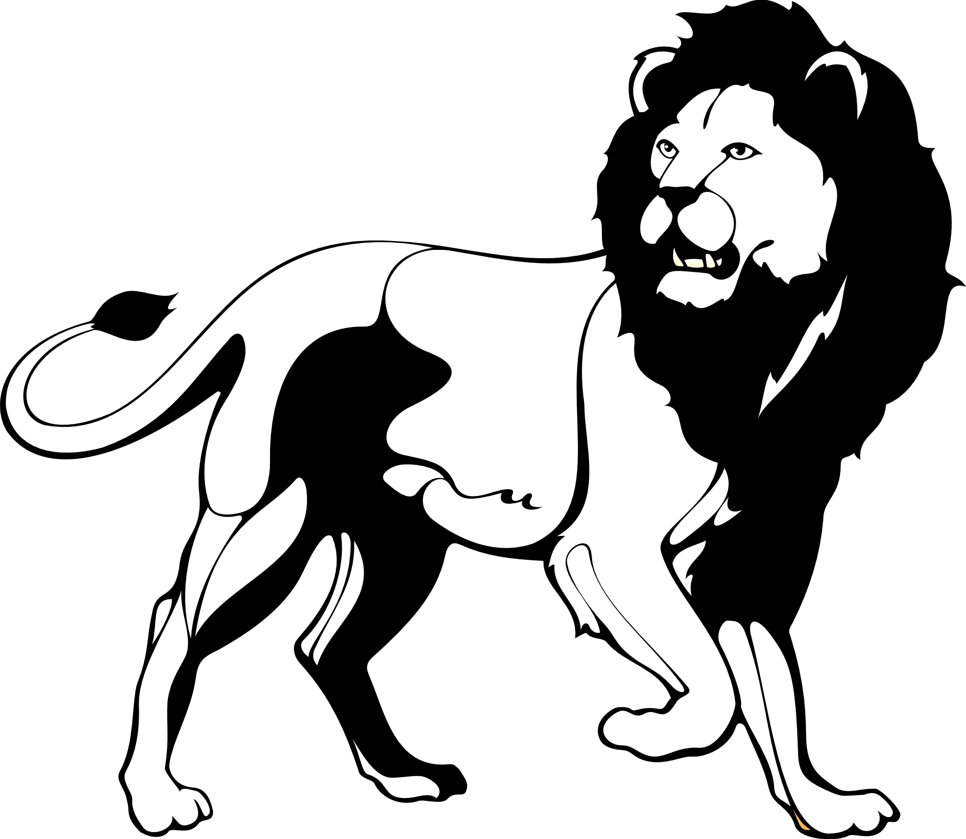 Drawing lions black and white. Collection of lion