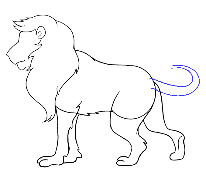 Drawing lions figure. How to draw a