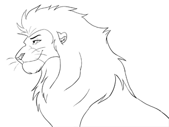 Free lineart head by. Drawing lions male lion picture black and white library