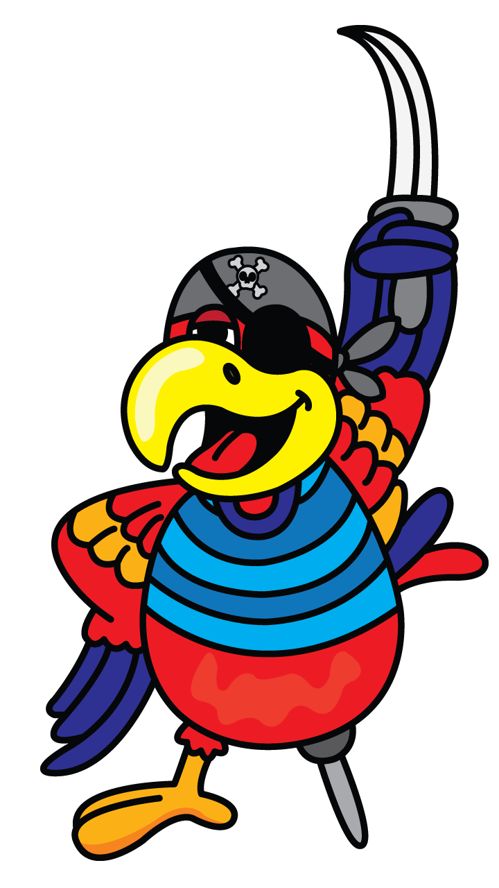 Drawing manuals vector. Pirate parrot painting http