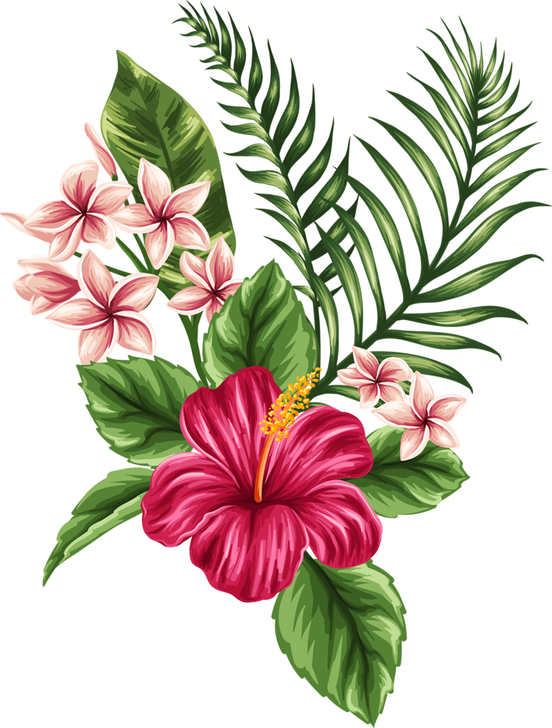 Drawing marker floral. Hawaii flower at getdrawings